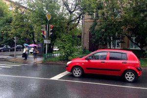 shtraf-za-peresechenie-stop-linii1